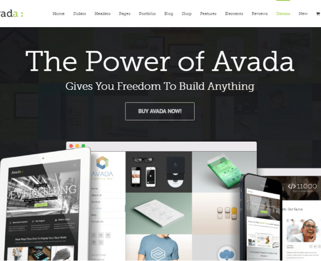 5 Reasons Why you Should Not Buy the Avada Theme!